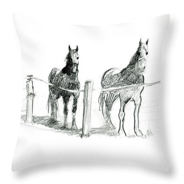 Friesian Horses Throw Pillow