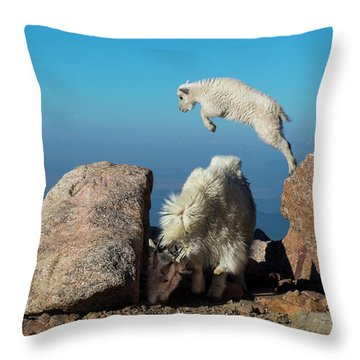 Leaping Baby Mountain Goat Throw Pillow