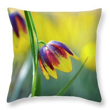 Throw Pillow featuring the photograph Fritillaria Reuteri by Tim Gainey