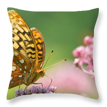 Fritillary Throw Pillow