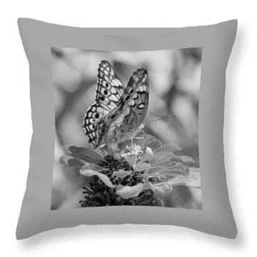 Fritillary Butterfly Throw Pillow