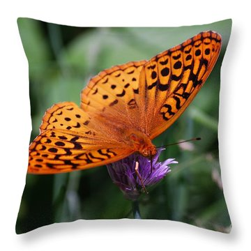 Fritillary Wings Throw Pillow