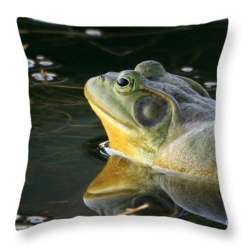 Throw Pillow featuring the photograph Frog At Sunset by Paula Guttilla