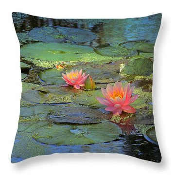 Frog Creek Throw Pillow by Kat Besthorn