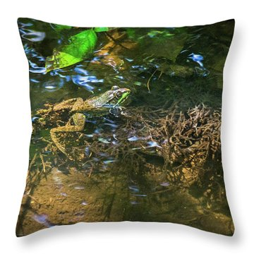 Throw Pillow featuring the photograph Frog Days Of Summer by Bill Pevlor