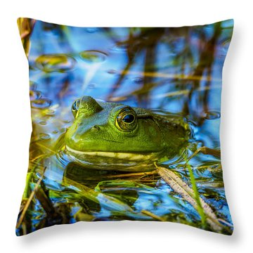 Frog In My Pond Throw Pillow