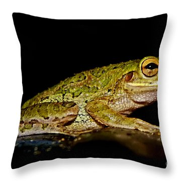 Throw Pillow featuring the photograph Cuban Tree Frog by Olga Hamilton
