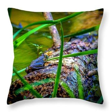 Frog On A Log 1 Throw Pillow