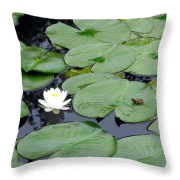 Frog On Lily Pad Throw Pillow by George Jones