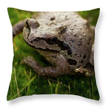 Throw Pillow featuring the photograph Frog On The Grass by Jean Noren