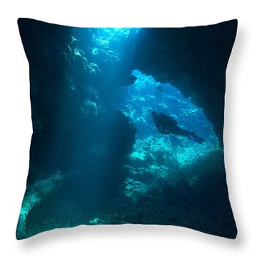 Throw Pillow featuring the photograph From Above by Aaron Whittemore