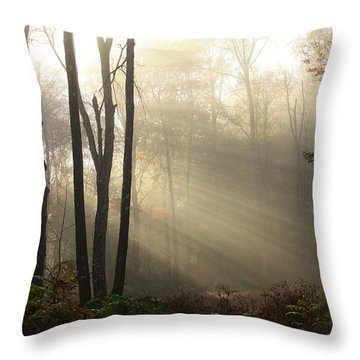 From Above Throw Pillow by Karol Livote