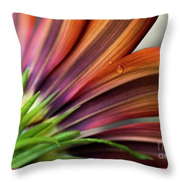 Throw Pillow featuring the photograph From Behind by Wendy Wilton