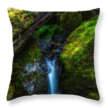 From Between Throw Pillow