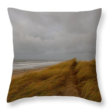 From Dunes To Sea Throw Pillow