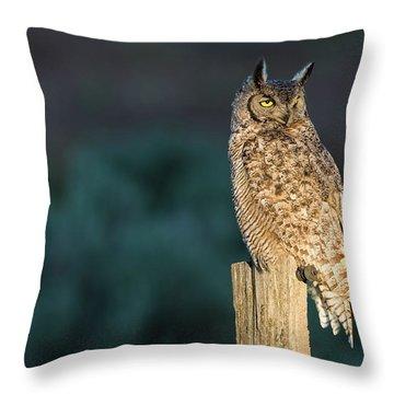 From Dusk Til Dawn Throw Pillow by Scott Warner