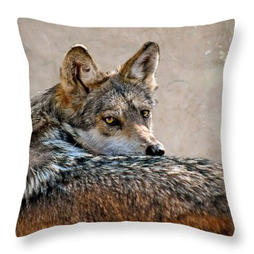 From Out Of The Mist Throw Pillow