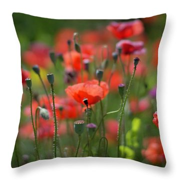 From Seed, To Seed Throw Pillow