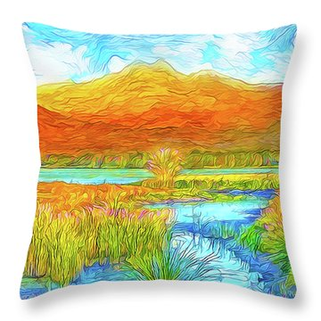 From Sky To Mountain To Stream - Boulder County Colorado Throw Pillow by Joel Bruce Wallach