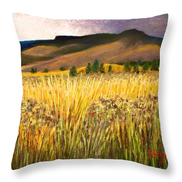 From Storm Into Sunshine Throw Pillow