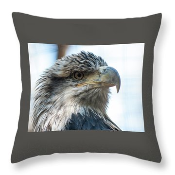 From The Bird's Eye Throw Pillow