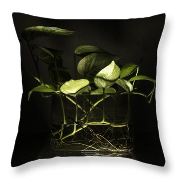 From The Bottom Throw Pillow by Rajiv Chopra