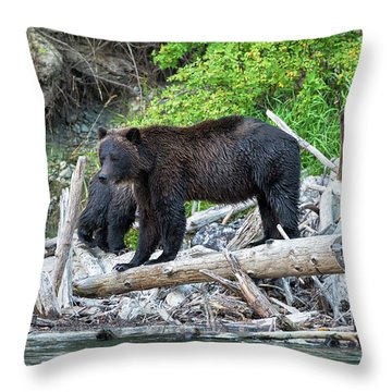 From The Great Bear Rainforest Throw Pillow by Scott Warner