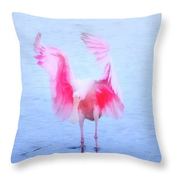 From The Heavens Throw Pillow by Mark Andrew Thomas