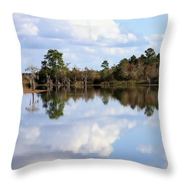 From The Lake To The Channel  Throw Pillow by Debra Forand