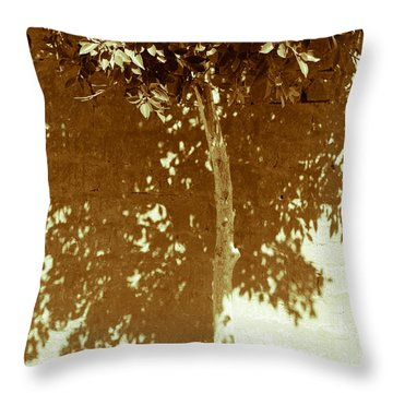 Throw Pillow featuring the photograph From The Plain  by Jez C Self