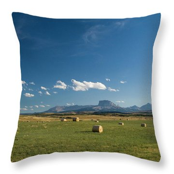 From The Prairie To The Rockies Throw Pillow