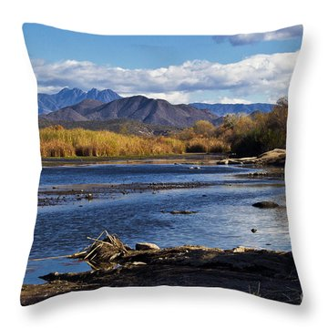 From The Salt Throw Pillow