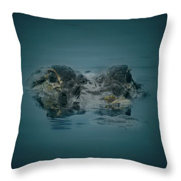 From The Series I Am Gator Number 6 Throw Pillow