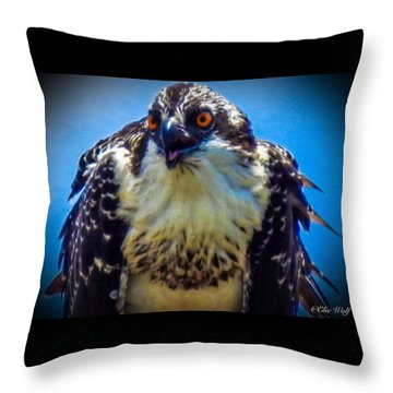From The Series The Osprey Number 3 Throw Pillow