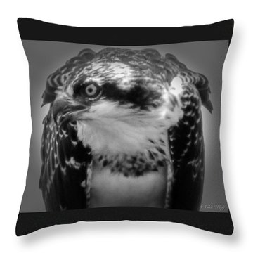 From The Series The Osprey Number Two Throw Pillow