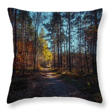 From The Shadow To The Light Throw Pillow