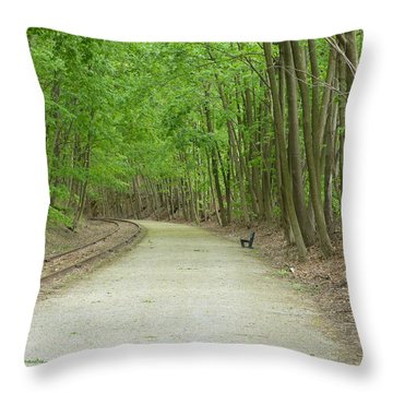 Throw Pillow featuring the photograph From The Summit by Donald C Morgan