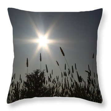 From Where I Sit Throw Pillow
