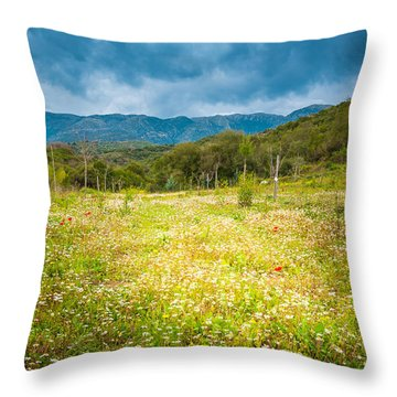 From Winter To Spring Throw Pillow