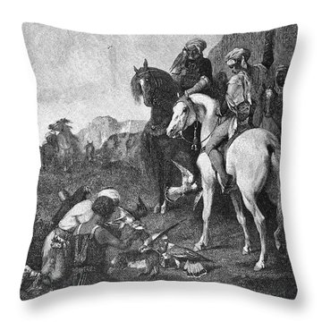 Fromentin: Hawking Throw Pillow by Granger