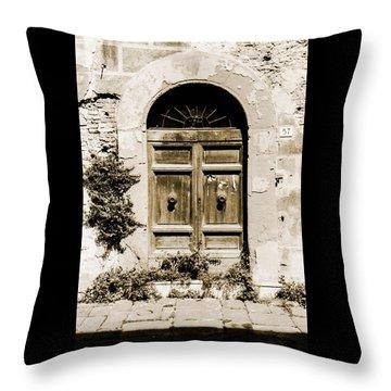 Front Door Throw Pillow