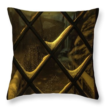 Front Door Throw Pillow