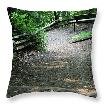 Throw Pillow featuring the photograph Front Row Seat by Wanda Brandon