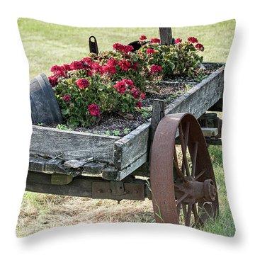 Front Yard Decor Throw Pillow