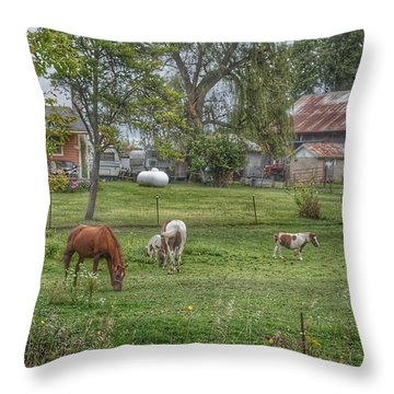 1008 - Front Yard Ponies Throw Pillow