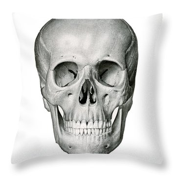 Frontal View Of Human Skull Throw Pillow
