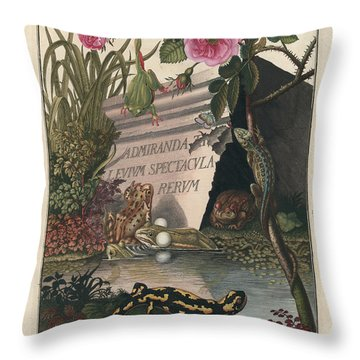 Throw Pillow featuring the drawing Frontis Of Historia Naturalis Ranarum Nostratium by August Johann Roesel von Rosenhof