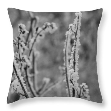 Throw Pillow featuring the photograph Frost 1 by Antonio Romero