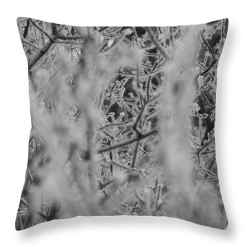 Frost 2 Throw Pillow by Antonio Romero