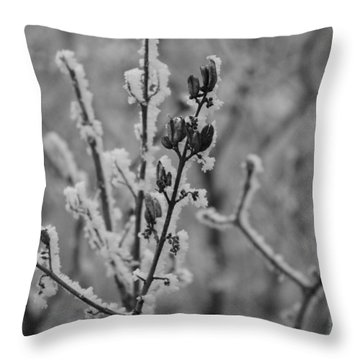 Throw Pillow featuring the photograph Frost 5 by Antonio Romero